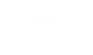 Hurricane Dental Group Logo